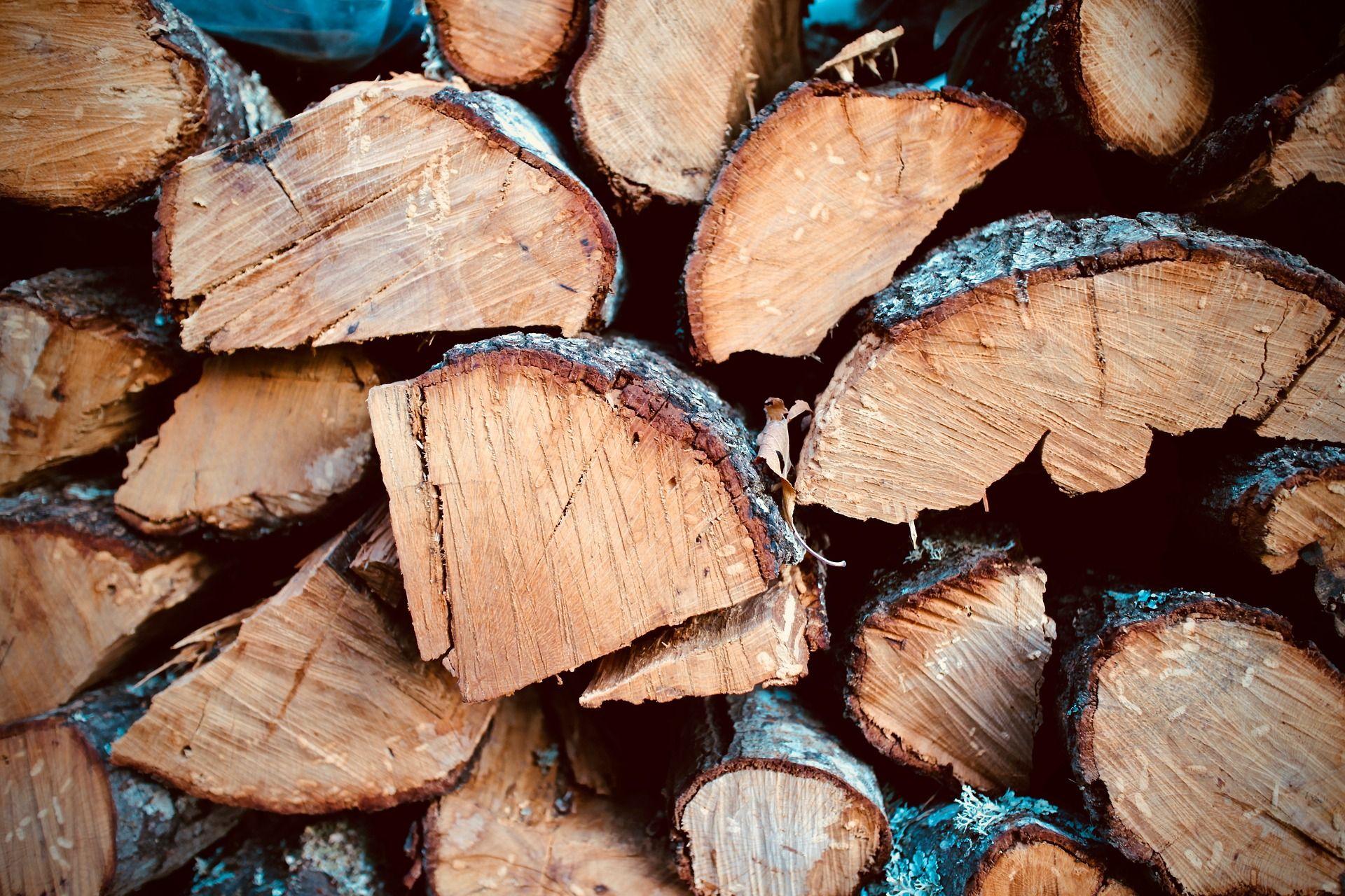 פרקט בשרון בית לריצופי עץ